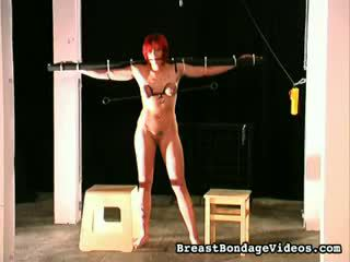 A Good Whipping